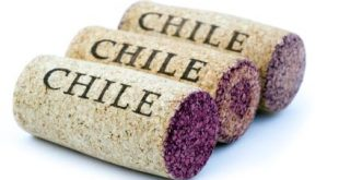 1. Vinhos Chilenos
