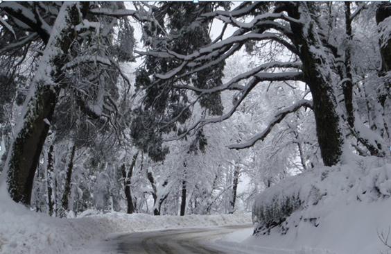 Inverno no Vale Las Trancas