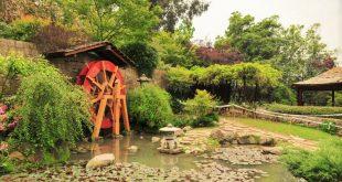 Jardín Japonés Providencia-Santiago I