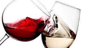 prove-os-melhores-vinhos-chilenos