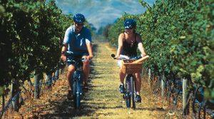 Tour de bicileta na vinícola cousiño macul