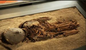Uma múmia Chinchorro