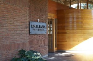 Vinícola Emiliana Chile