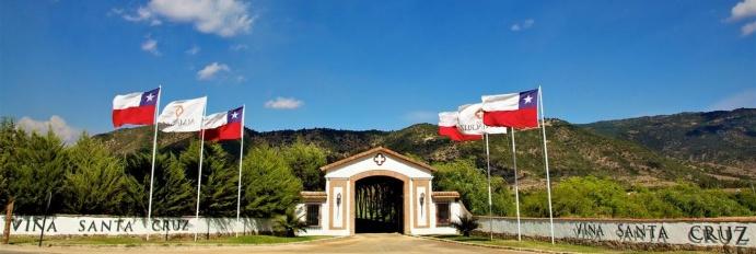 Visite a Vinícola Santa Cruz