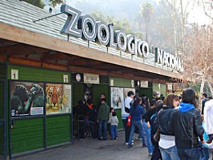 Zoológico Nacional no Parque Metropolitano em Santiago