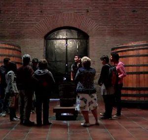 tour na vinícola cousiño macul